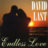 David Last - Endless Love (2010)
