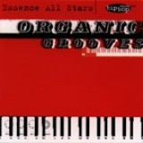 The Essence All Stars - Organic Grooves (1996)